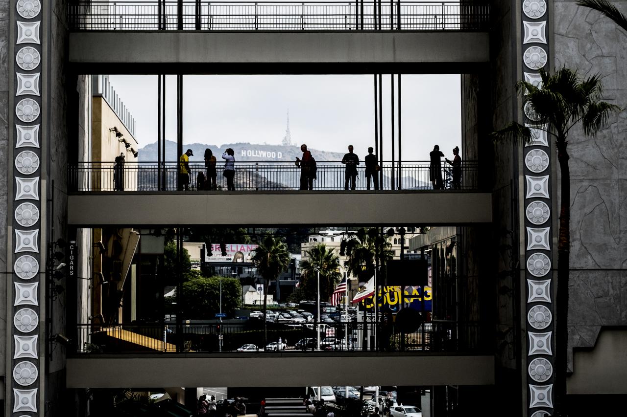 Hollywood / Zaragoza Walkers